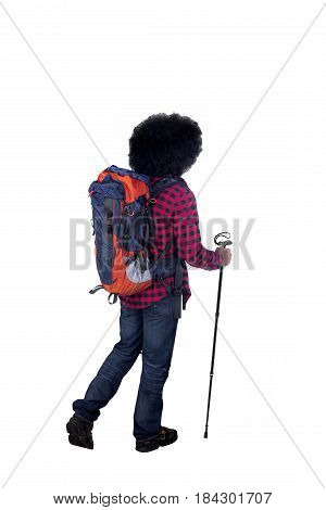 Bcak view of young male hiker carrying backpack and holding stick pole while walking in the studio