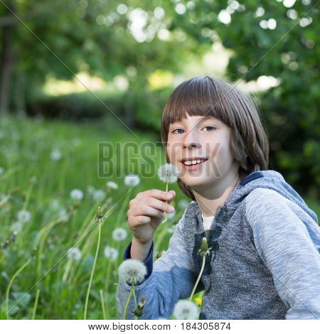 Boy with dandelion over blured green grass, summer nature outdoor