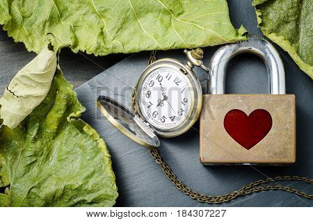 Red heart shape over padlock with vintage pocket watch and dry leaves on black stone background