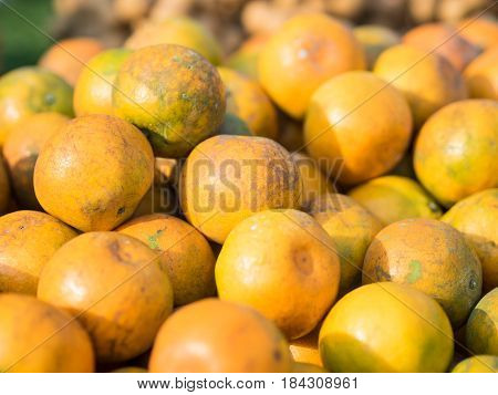 Fresh oranges in market sweet and sour fruit with green background