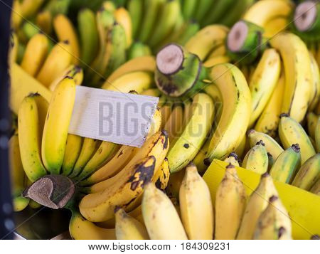 Fresh natural ripe banana with white placard in outdoor market.