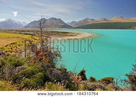 Lake Pukaki, gorgeous color glacial lake in New Zealand