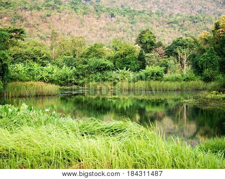 Tranquil scenceView of lake with green tree and mountian behindThailand