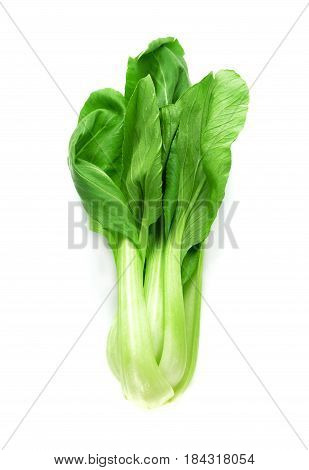 vegetables green pakchoi isolated on white background
