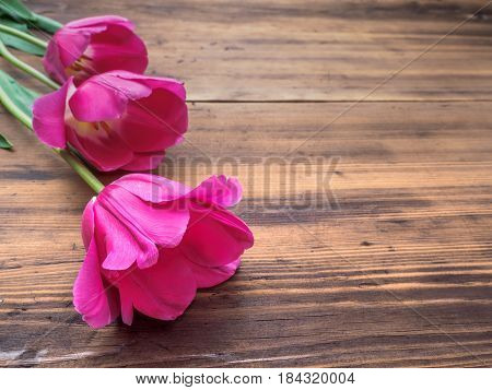 Pink tulips, floral arrangement on wooden background from old boards and a space for messages. Background for Mother's Day, 8 March and other greeting cards for lovely women. Soft focus.