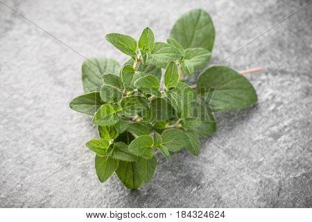 Oregano leaves over black stone background. Top view.