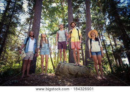 Smiling friends standing together in forest on a sunny day