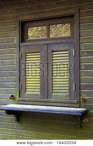 Window And Moss