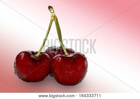 Three cherries studio isolated with red-white background