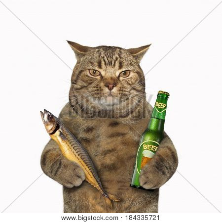 The cat is holding a bottle of beer and a smoked fish. White background.