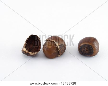 chestnut isolated on white background, glossy brown roasted chestnuts ready to eat