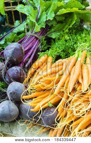 Close-up of fresh dutch carrots and beetroots in local farmers market
