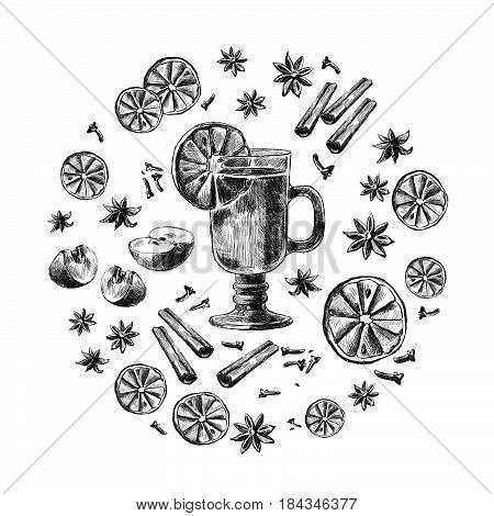 Mulled wine Wine and spices, orange, apple, cinnamon, carnation, anisetree. Hand drawn vector Illustration.