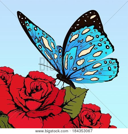 Butterfly With Blue Spotted Wings On Flowers Of Red Roses On A Blue Sky Background, Vector Banner, C