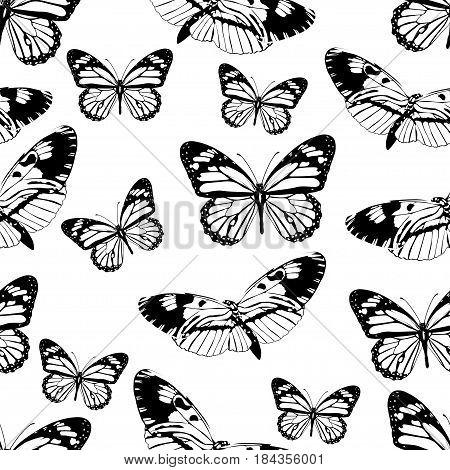 Butterflies Seamless Pattern, Monochrome Vector Background, Coloring Book. Black And White Various I
