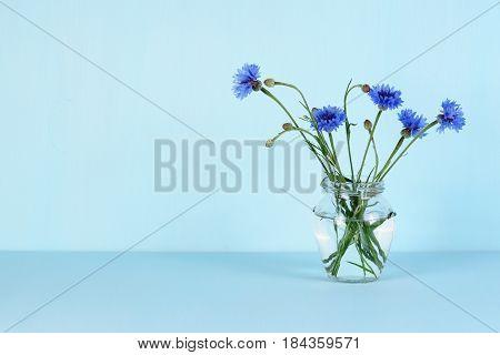 Cornflowers in glass jar on blue background