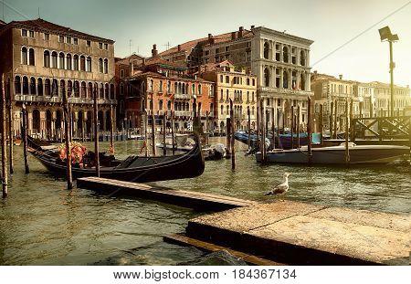 Gondola pier in summer Venice at sunset
