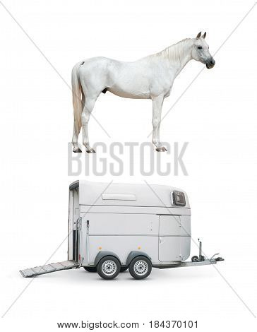 horse and horse trailer isolated over a white