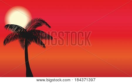 Silhouette of palm and sun background. Design for poster or banner. Vector illustration