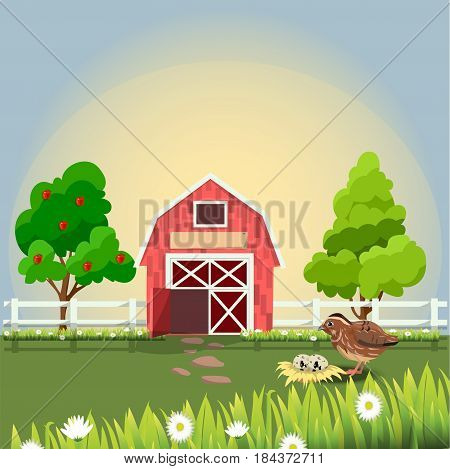 Original trendy vector illustration of cute little quail with nest end eggs on farm with fruit trees and chamomile, Farm animals collection