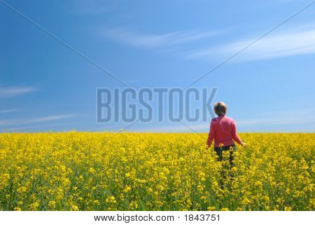 Field, Sky And The Woman