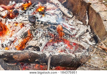 Toasting sausage over the fire. Camping in the wild. Fire in the camp