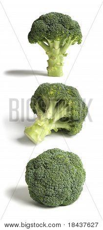 Three Sticks of Broccoli, Hi Res.