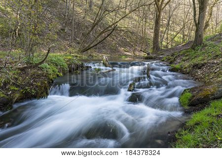 A creek with a small waterfall in the woods during spring.