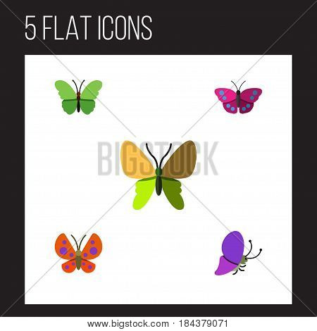 Flat Monarch Set Of Beauty Fly, Milkweed, Moth And Other Vector Objects. Also Includes Moth, Archippus, Monarch Elements.