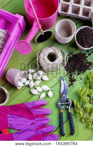 all you need to have fun in the garden - garden tools
