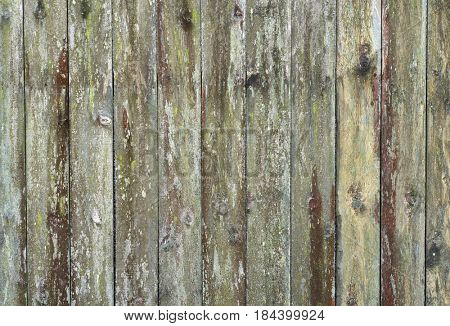Weathered wooden fence panels close up detail.