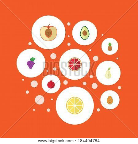 Flat Garnet, Ananas, Cluster And Other Vector Elements. Set Of Fruit Flat Symbols Also Includes Lemon, Pineapple, Pear Objects.