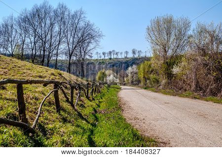 Country road with fence on spring time