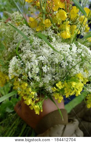 A lovely bouquet of cow parsley and rapeseed.