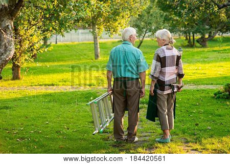 Senior gardeners couple, back view. Man and woman standing outdoor. Gardening tips and ideas.