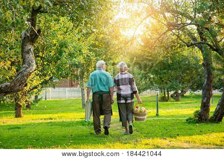 Senior couple in the garden. Man and woman, back view.