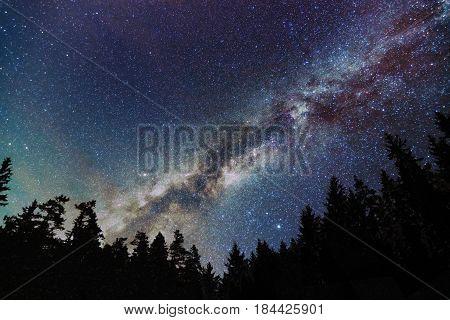 Milky Way Galaxy Starry sky with trees. Starry night.