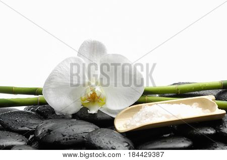 White orchid blossom with wet black stones ,grove, salt in bowl  on wet background