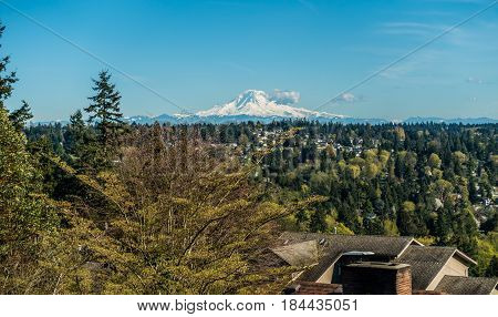 A view of Mount Rainier from Burien Washington in Spring.