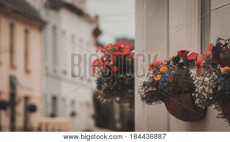 baskets with flowers outside a row of terrace houses in Minehead Somerset England