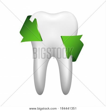 White tooth with two green arrow stomatology icon isolated on white background realistic vector illustration