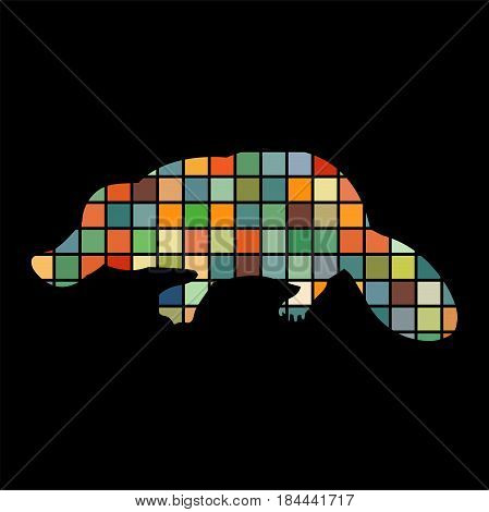 Platypus mammal color silhouette animal. Vector Illustrator.
