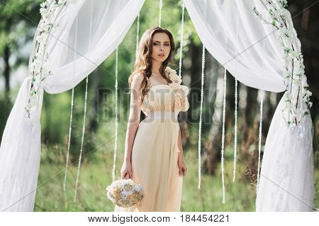 Beauty portrait of a very pretty cute young girl. Doll appearance. Cute woman with brown hair in a pink cute wedding dress on nature near the wedding arch. Long hair. Natural light. Cute model posing in nature, Cute dress