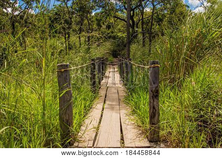 Rustic wooden bridge in Goias Brazil. Chapada dos Veadeiros