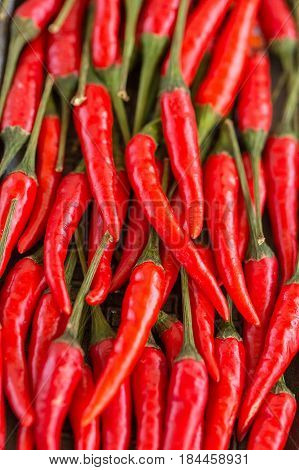 red hot chili peppers, popular spices concept - close-up on a bunch of tightly packed red chili peppers, nice clean juicy pods with green tails, top view, flat lay, vertical