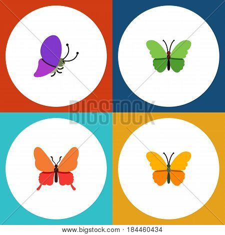 Flat Moth Set Of Danaus Plexippus, Butterfly, Summer Insect And Other Vector Objects. Also Includes Milkweed, Butterfly, Monarch Elements.