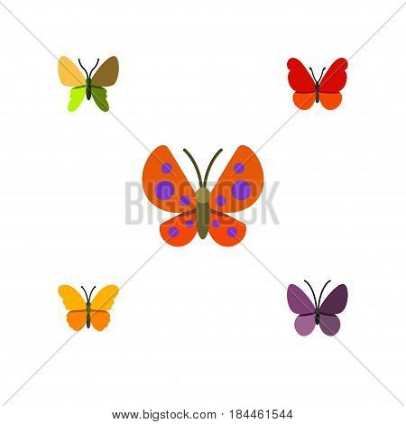 Flat Butterfly Set Of Violet Wing, Butterfly, Moth And Other Vector Objects. Also Includes Moth, Butterfly, Milkweed Elements.