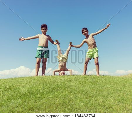 Brothers playing upside down on green meadow