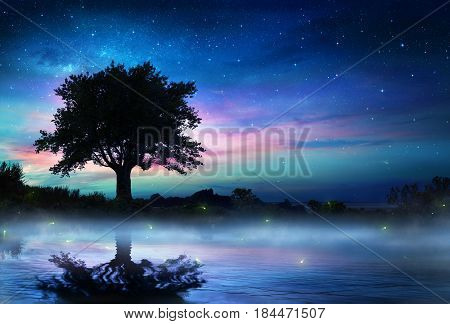 Starry Night With Lonely Tree - Magic Background