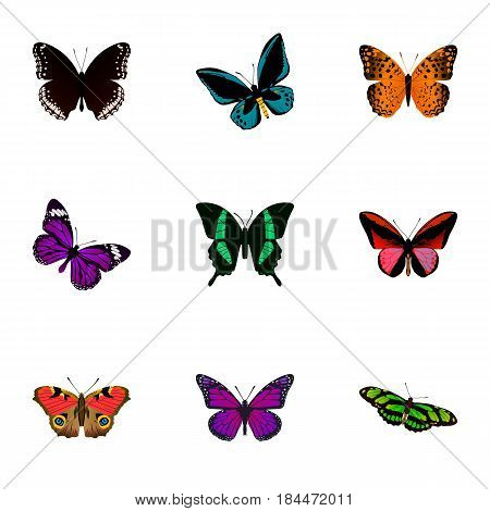 Realistic Spicebush, American Painted Lady, Demophoon And Other Vector Elements. Set Of Butterfly Realistic Symbols Also Includes Purple, Violet, Orange Objects.